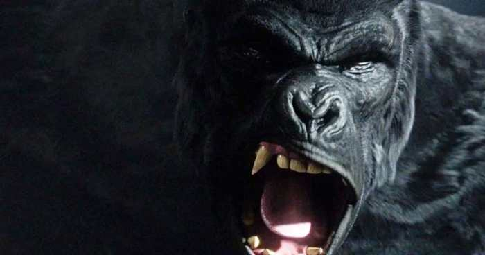 flash-gorilla-city-grodd