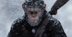 War of the planet of the apes